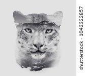 snow leopard irbis head with... | Shutterstock . vector #1042322857