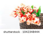 close up of red tulips in... | Shutterstock . vector #1042348444