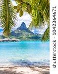 bora bora island  french... | Shutterstock . vector #1042364671