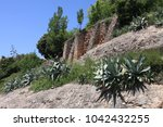 rocks around montserrat... | Shutterstock . vector #1042432255