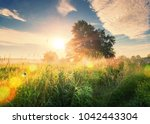 vivid summer sunrise on green... | Shutterstock . vector #1042443304