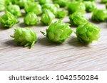 hop cones  humulus lupulus  on...   Shutterstock . vector #1042550284
