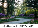 gyeonggi do  south korea  ... | Shutterstock . vector #1042717861