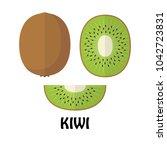 vector illustration flat kiwi... | Shutterstock .eps vector #1042723831