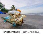 flotsam  garbage on sai keaw... | Shutterstock . vector #1042786561