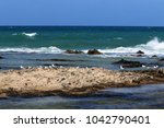 coast of the mediterranean sea... | Shutterstock . vector #1042790401