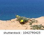 coast of the mediterranean sea... | Shutterstock . vector #1042790425