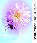 the image of the flower on the... | Shutterstock . vector #1042874071
