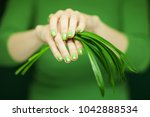 woman hands with green nail... | Shutterstock . vector #1042888534