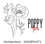vector poppy flowers decorative ... | Shutterstock .eps vector #1042891471