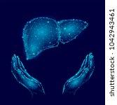 world hepatitis day awareness... | Shutterstock .eps vector #1042943461