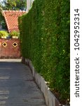 curved hedges in fancy garden | Shutterstock . vector #1042952314