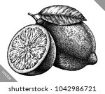 engrave isolated lemon hand... | Shutterstock .eps vector #1042986721