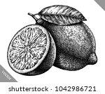 engrave isolated lemon hand... | Shutterstock .eps vector #1042986721