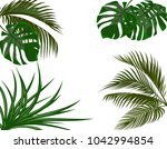 green leaves of tropical palm... | Shutterstock . vector #1042994854