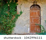 Vintage Brown Arched Door On...