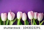 pink fresh spring tulips... | Shutterstock . vector #1043023291