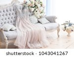 bridal pink dress gown on the... | Shutterstock . vector #1043041267
