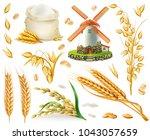 wheat  rice  oats  barley ...   Shutterstock .eps vector #1043057659