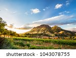 Small photo of Wine region near Stellenbosch looking at Simonsberg in South Africa
