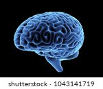 magnetic resonance image of the ... | Shutterstock . vector #1043141719