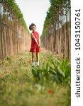 little girl walking in nature... | Shutterstock . vector #1043150761