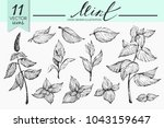 vector set with mint... | Shutterstock .eps vector #1043159647