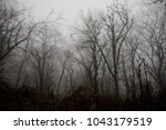 landscape with beautiful fog in ... | Shutterstock . vector #1043179519