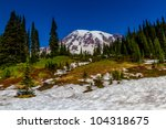 Snow Field And Alpine Meadow O...