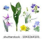 Spring Forest Flower Set....