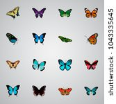 set of butterfly realistic...   Shutterstock .eps vector #1043335645