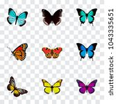 set of butterfly realistic...   Shutterstock . vector #1043335651