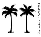 tropical palm trees. vector... | Shutterstock .eps vector #1043347024