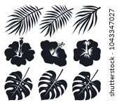 tropical leaves and flowers....   Shutterstock .eps vector #1043347027