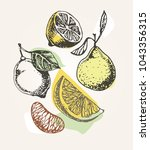 hand drawn doodle fruits | Shutterstock .eps vector #1043356315