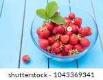 strawberries with leaves and... | Shutterstock . vector #1043369341