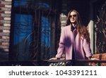 fashionable girl walking on...   Shutterstock . vector #1043391211