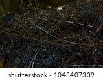 twisted metal swarf spiral... | Shutterstock . vector #1043407339