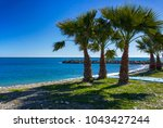 palm trees on a beach in... | Shutterstock . vector #1043427244