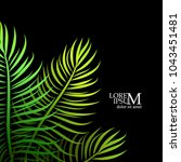background of palm leaves.... | Shutterstock .eps vector #1043451481
