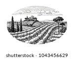 hand drawn vineyard landscape.... | Shutterstock .eps vector #1043456629