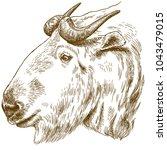 vector antique engraving... | Shutterstock .eps vector #1043479015