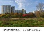 modern urban floristics of... | Shutterstock . vector #1043483419