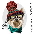 vector dog with glasses ... | Shutterstock .eps vector #1043500819
