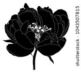 illustration with peony flower...   Shutterstock .eps vector #1043507815