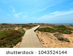 wooden paths and observation... | Shutterstock . vector #1043524144