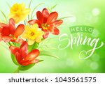 romantic background with spring ...   Shutterstock .eps vector #1043561575