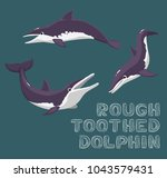 rough toothed dolphin cartoon... | Shutterstock .eps vector #1043579431