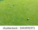 golf ball on golf course. | Shutterstock . vector #1043592571