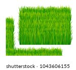 green fresh grass isolated on... | Shutterstock .eps vector #1043606155